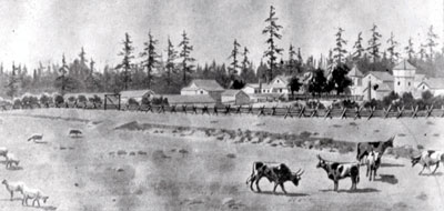 Artist's Drawing of Ft. Nisqually